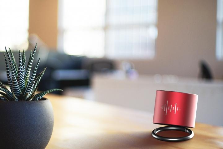 S25 - speaker ring
